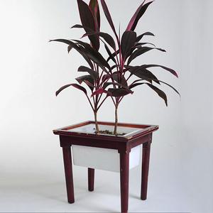 低碳环保花盆