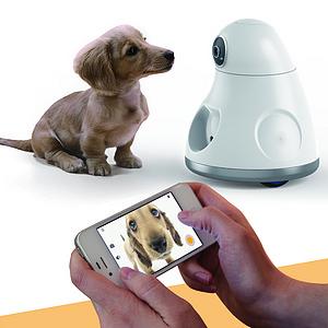 宠物狗远程互动仪