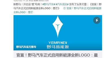 野马新能源发布新LOGO,网友:怎么有点不正经?