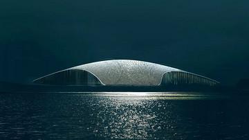 """挪威观鲸文化中心竞赛,""""一条鲸""""胜出"""